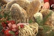Tradycje świąteczne w Tworogu