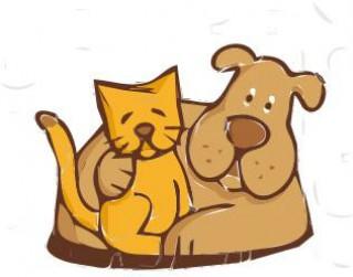 Szczepienie psów i kotów